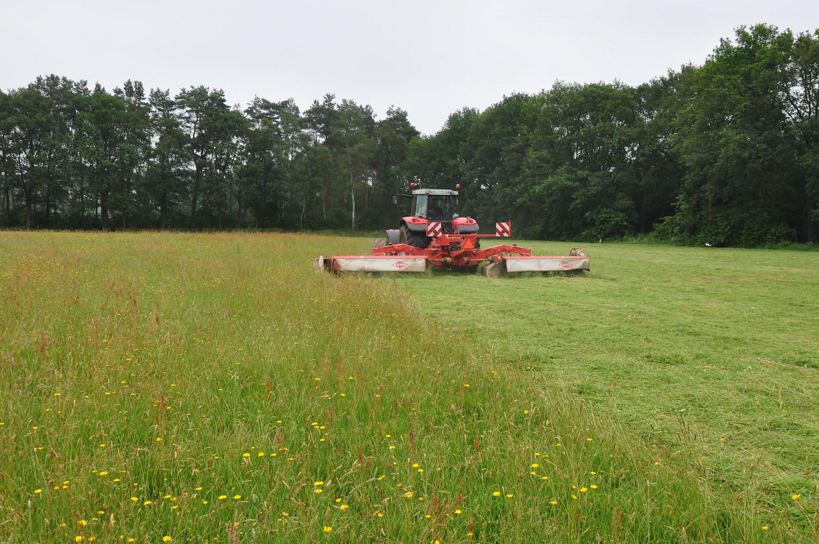 Projectleider landbouw en natuur
